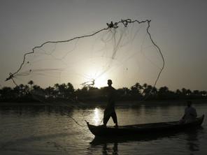 رجلان عراقيان في زورق يرمي احدهما شباك الصيد في مياه نهر الفرات، على بعد 30 كيلومترا (20 ميلا) إلى الجنوب من النجف في العراق، الخميس 8 ايار 2008. (ا ف ب)
