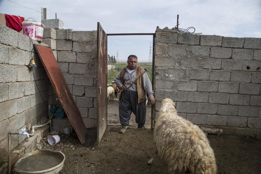 تَركَ سكان قرية قريبة من كركوك منازلهم عندما أًصبح تنظيم داعش الإرهابي على مقربة من مدينة الموصل.  ومع تراجع التنظيم ، عاد معظم السكان إلى قريتهم محاولين إعادة بناء حياتهم من جديد